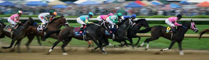 kentucky-derby-race-horses-6851